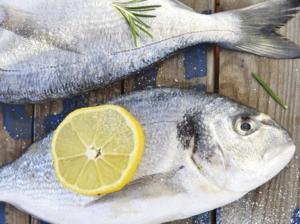 ryby-titulka