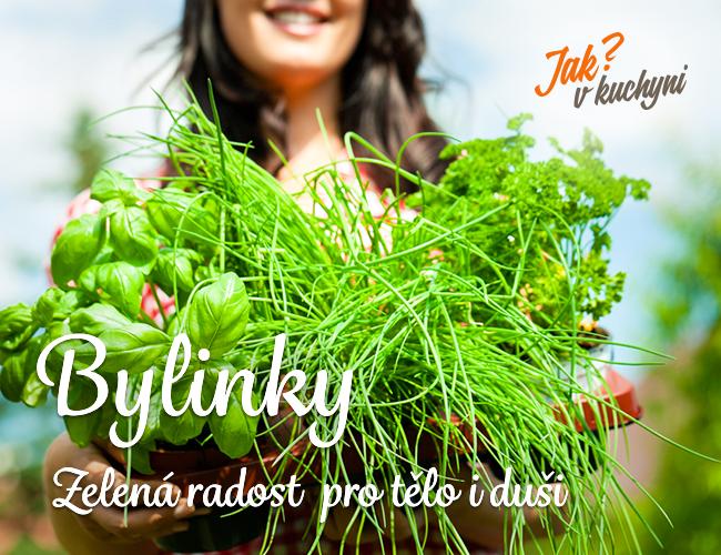 Bylinky v kuchyni - zelená radost pro tělo i duši