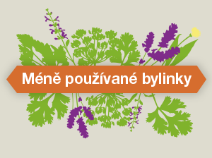 Infografiky: Méně používané bylinky v kuchyni