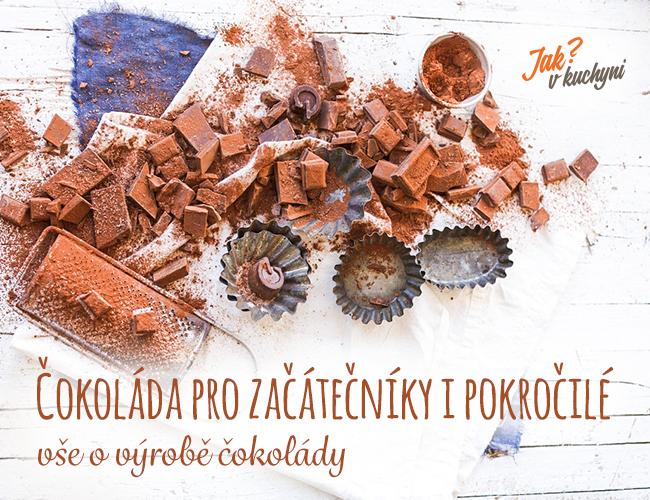 Čokoláda pro začátečníky i pokročilé - vše o výrobě čokolády