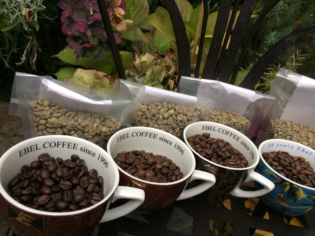 Test pražení nových sklizní kávy.