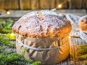 Panettone_italský vánoční chléb