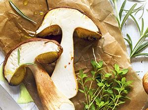 Domácí houbové koření v kostce