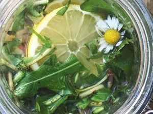 Bezinková a pampelišková limonáda