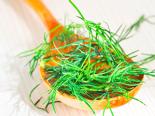 Kopr lze pěstovat i doma v květináči! A jak ho nejlépe využijeme v kuchyni