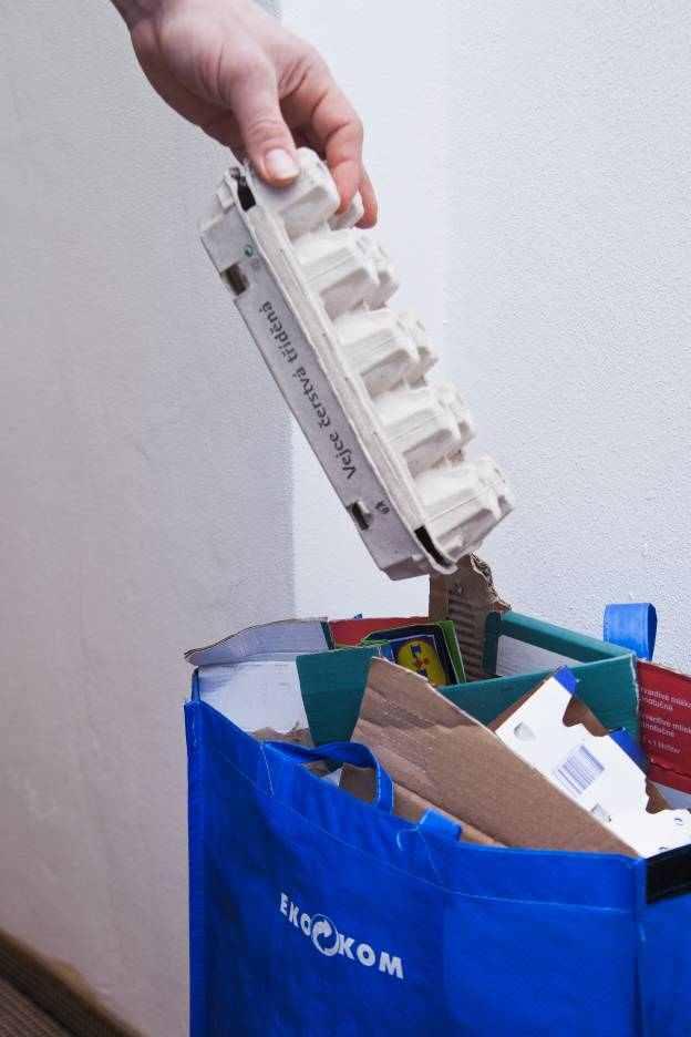 Jak Češi třídili a recyklovali odpady v roce 2019