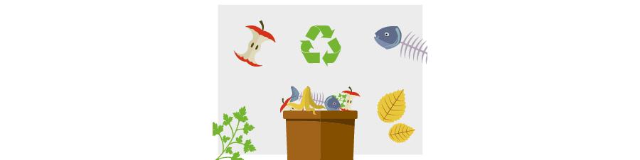 Infografika o třídění bioodpadu